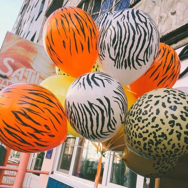 Воздушные шары Сафари (фото 2)