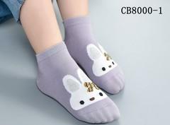 Носки для девочек (10 пар) арт. СВ8000-1 (р. 10-12)