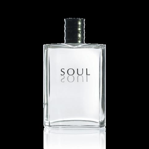Soul Eau de Toilette  Туалетная вода Soul