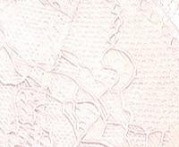 Трусы бикини LP-2638 (1шт.)