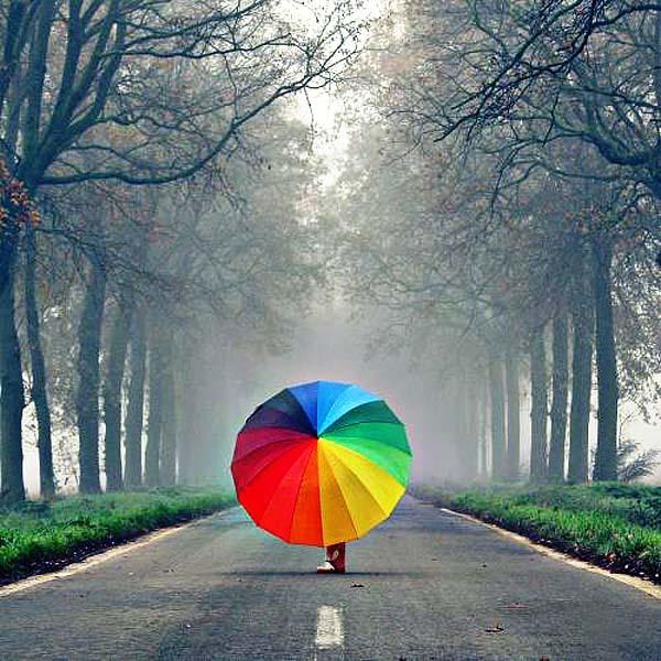 Вам не страшен дождь