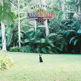 Matt Corby / Rainbow Valley (CD)