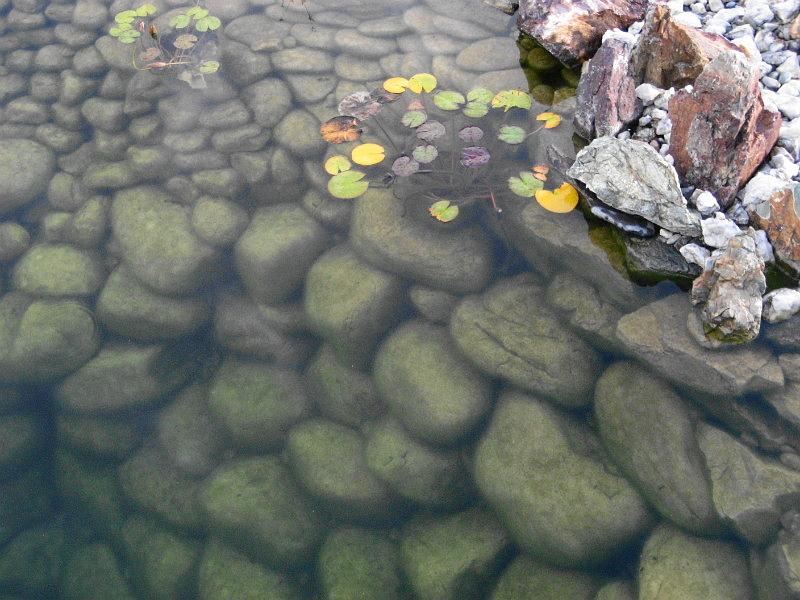 Водоём Булыжник речной Серый