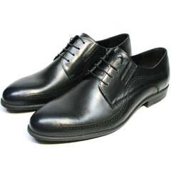 Мужские классические туфли броги Ikos 3416-4 Dark Blue.