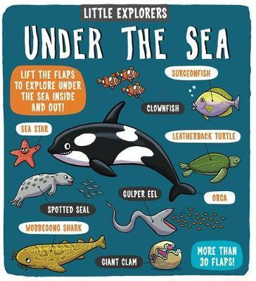 Kitab Little Explorers: Under the Sea | Dynamo Ltd.