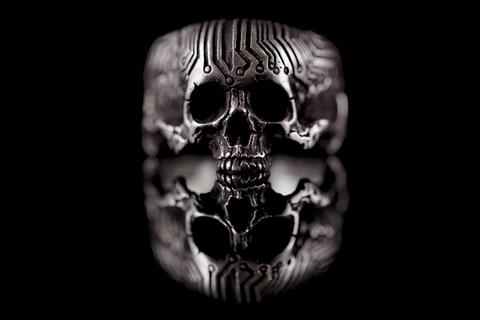 Перстень череп микросхема, без нижней челюсти