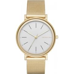 Наручные часы Skagen SKW2509