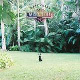 Matt Corby / Rainbow Valley (LP)