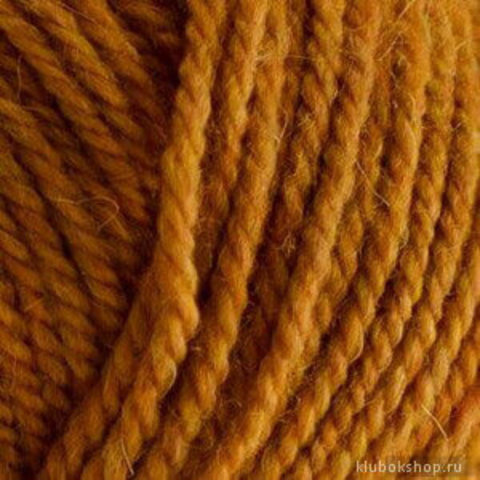 Пряжа Носочная (Пехорка) 34 Золото, фото