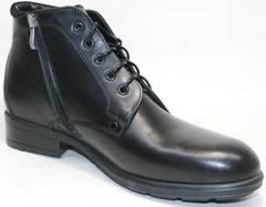 Классические ботинки мужские Ikoc 2678-1 S