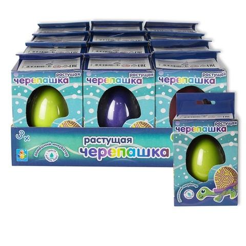 1toy домашний инкубатор, яйцо с раст. Черепашкой, 1кор*24бл*12 шт,56гр