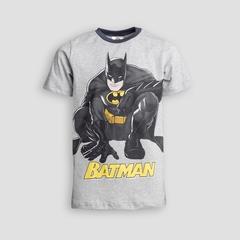 Детская мужская футболка WB E19K-23M101