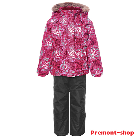 Комплект Премонт Астры в цвету WP91259 PINK