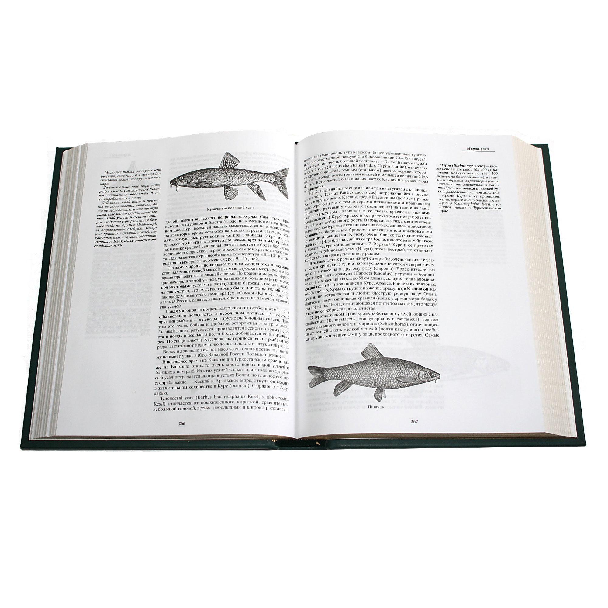 «Жизнь и ловля пресноводных рыб»