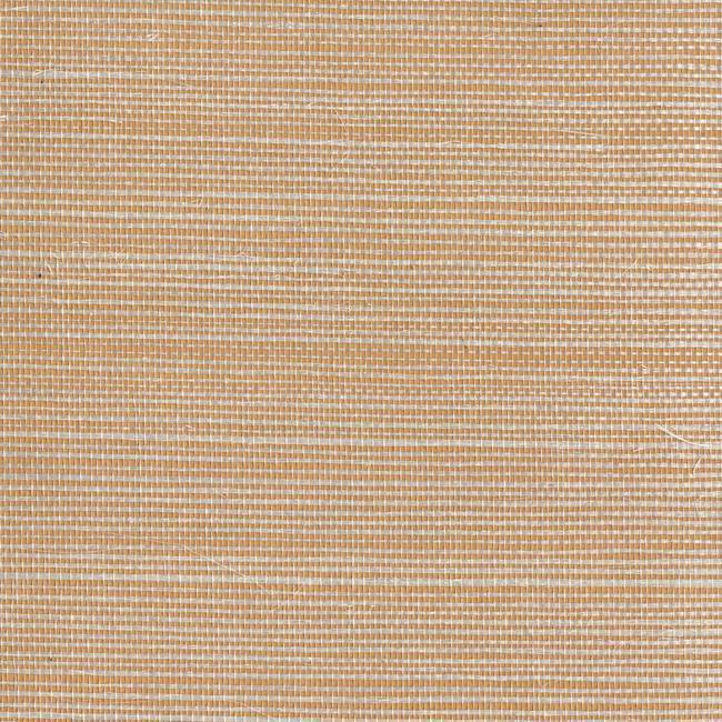 Обои York Designer Resource Grasscloth NZ0770, интернет магазин Волео