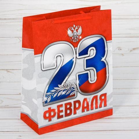 Пакет «23 февраля!» 23×27×8см