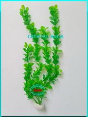 Растение 30см №4