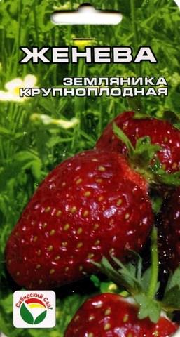 Семена Земляника Женева, крупноплодная