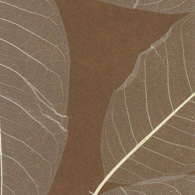 Обои York Designer Resource Grasscloth SE1801, интернет магазин Волео