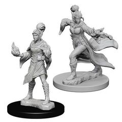 Pathfinder Deep Cuts Unpainted Miniatures - Elf Female Sorcerer