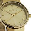 Купить Наручные часы Skagen SKW2196 по доступной цене
