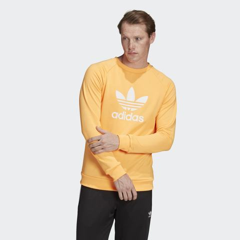 Свитшот мужской adidas ORIGINALS TREFOIL