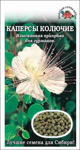 Семена Каперсы колючие, кустарник