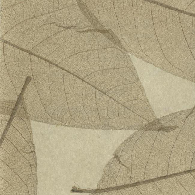 Обои York Designer Resource Grasscloth SX7728, интернет магазин Волео