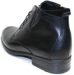 Классические мужские ботинки Ikoc 2678-1 S