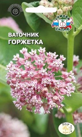 Семена Ваточник сирийский Горжетка