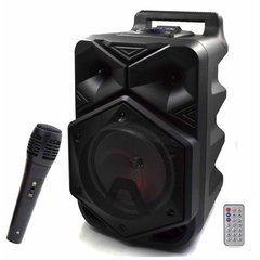 Акустическая переносная колонка BT-1778 с микрофоном
