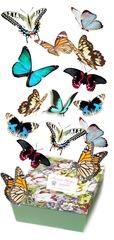 Салют из 15 бабочек