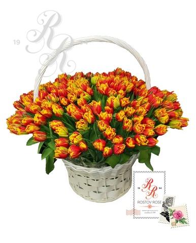 151 Пионовидный тюльпан в корзине