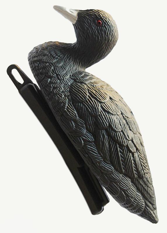 Чучело утка-лысуха плавающая