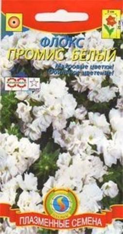 Семена Флокс махровый Промис белый, Одн