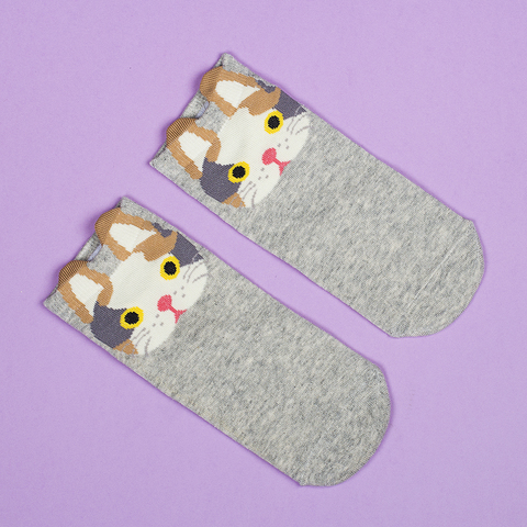 Носки Random Animals 3 ONE SIZE (35-40)