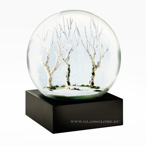 Снежный шар Зима