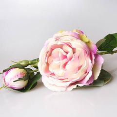 Роза пионовидная светло-сиреневая 3-572