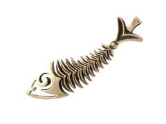 Скелет рыбы память моря