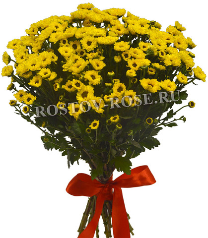Букет желтых хризантем сорта Сантини