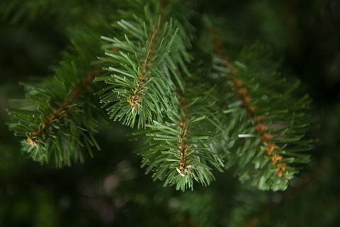 Искусственная елка Вирджиния 125 см зеленая