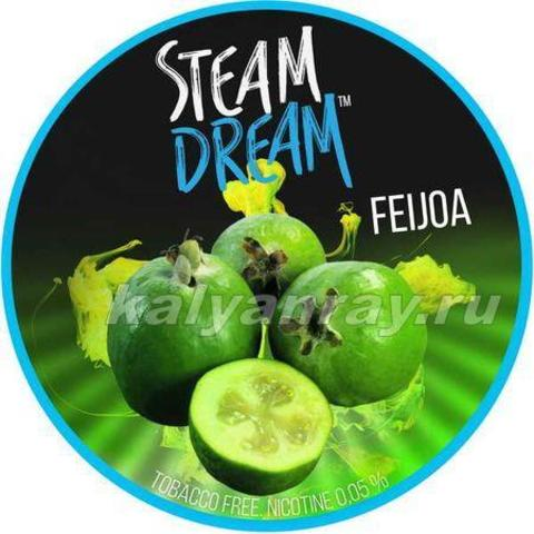 Steam Dream - Фейхоа