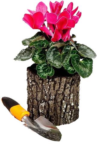 Цветочница вертикальная под дерево Дуб Surreal (маленькая)