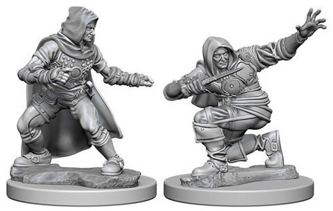 Pathfinder Deep Cuts Unpainted Miniatures - Human Male Rogue