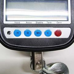Весы крановые ПетВес КВ-500К-1