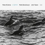 Peter Erskine / Juni (CD)
