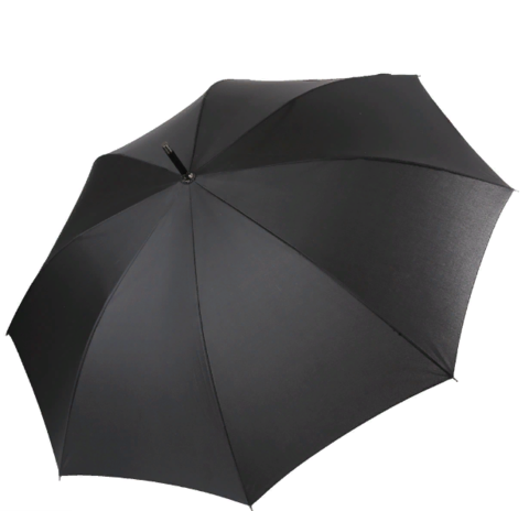 Зонт FABRETTI 1720