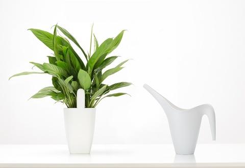 Xiaomi Smart Flower Monitor (Универсальный анализатор почвы и освещенности европейская версия)