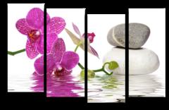 """Модульная картина """"Орхидея в воде"""""""