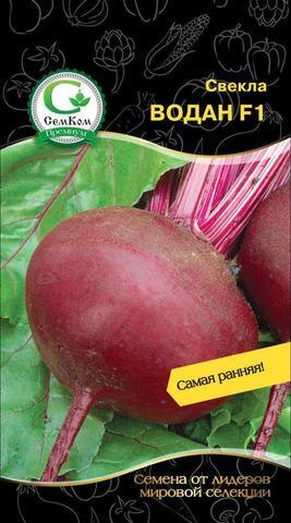 Семена Свекла Водан F1 (Bejo Zaden) 5 гр